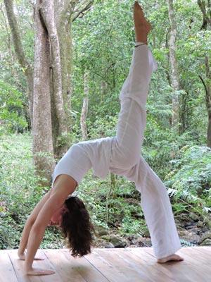 Vinyasa-Rhythms-Yoga