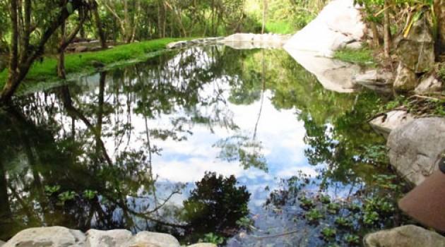 Rio Chirripo Yoga Retreat and Lodge