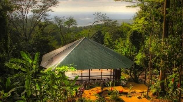 Selva Armonia