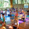 Danyasa Yoga Retreats and Teacher Training