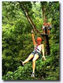 woman sailing through the rainforest on a zipline