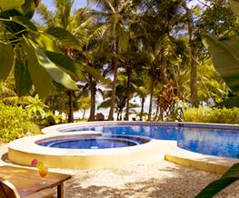 beautiful swimming pool midst tropical garden
