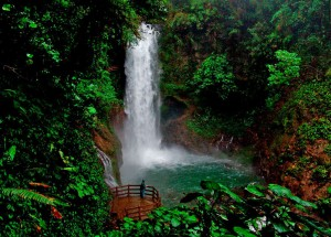 a small but beautiful waterfall at La Paz Waterfall Gardens