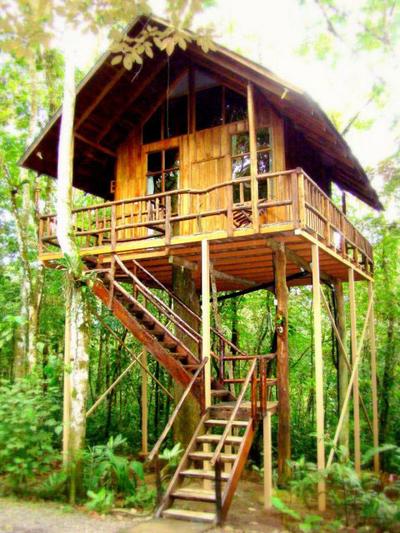 uniquely designed tree house