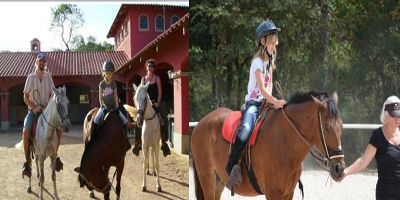 trained and healthy horses of Haras del Mar