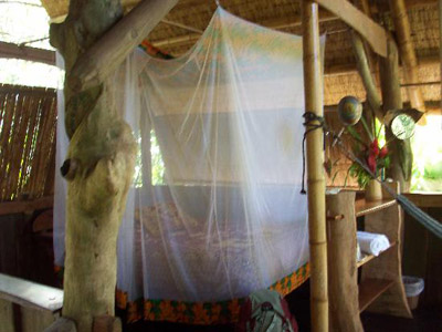 bed with mosquito net at ojo del mar