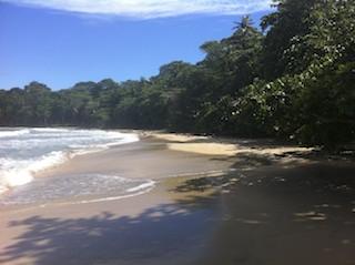 Cocles Beach Caribbean Costa Rica
