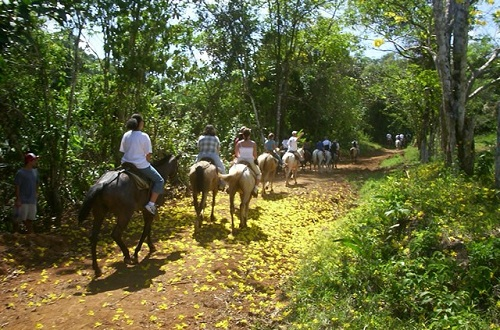 People are enjoying horse riding