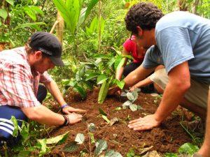 Punta Mona Permaculture design course